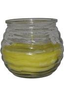 Citronella Garden Candle in Glass Jar